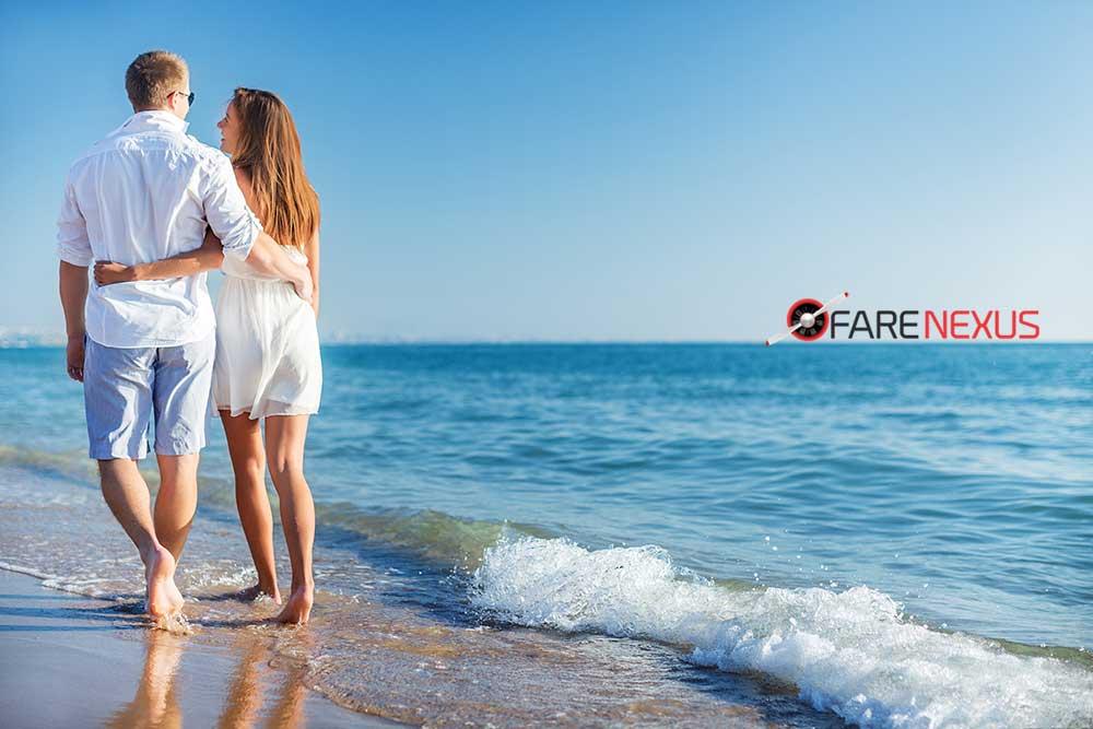 Farenexus - Travel Meta Search Engine from Montreal