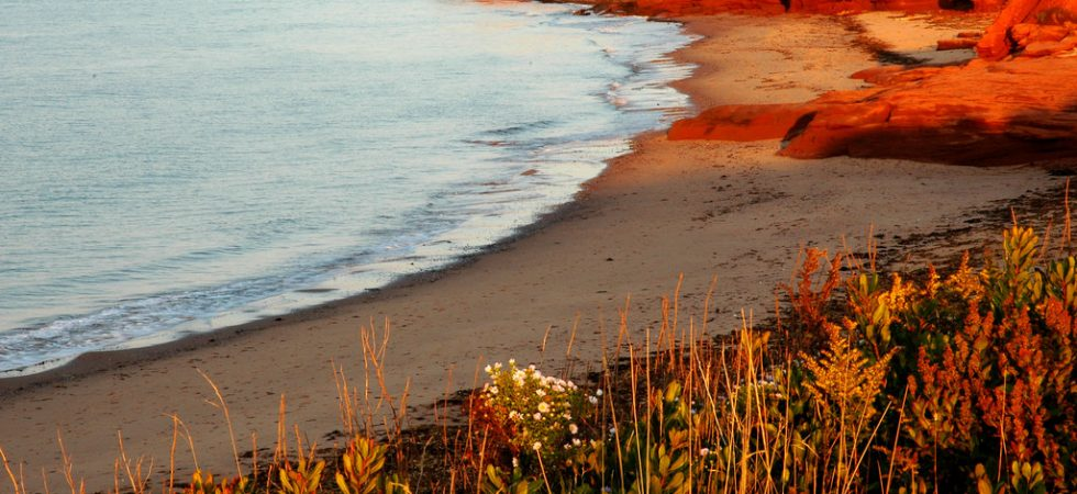 PEI National Park - Book and Compare Flight Deals
