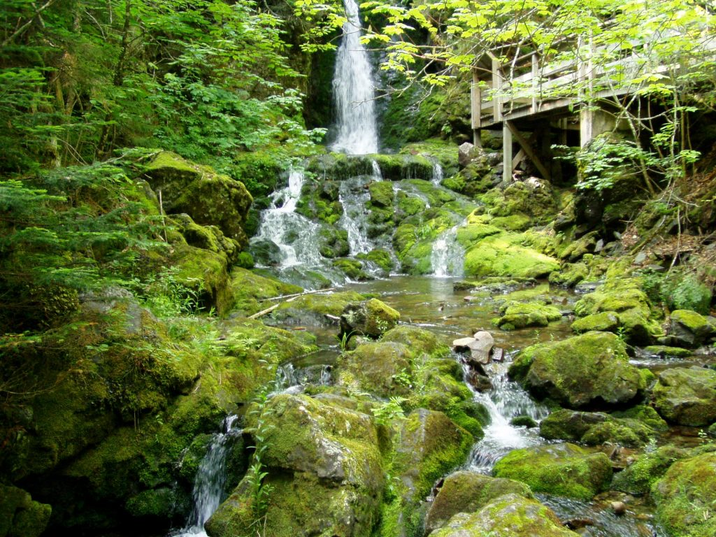 Fundy National Park - Book Cheap Flights
