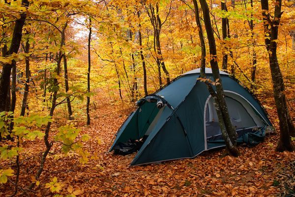 Camping - Book Cheap Flight Tickets