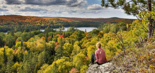 Algonquin Park - travel metasearch