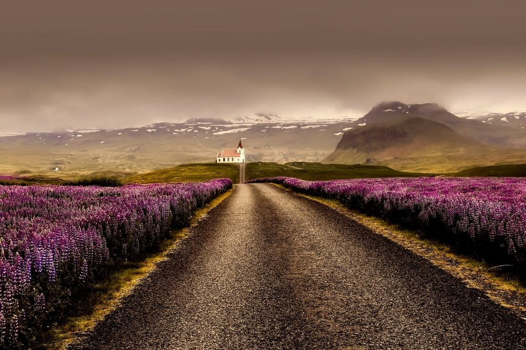Flower Valley Iceland
